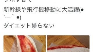 【画像】中川翔子の愛用のまくらがすごいwwwwww