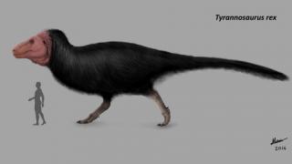[画像]見ろよこの色んなティラノサウルスwwwwwwwww