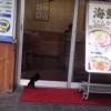 子猫がつるまるうどんへ潜入しようとしてるwwwwwwwwwwwwwww